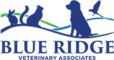 Blue Ridge Veterinary Associates
